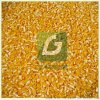 玉米脫皮製糝機玉米制渣機玉米破碴機