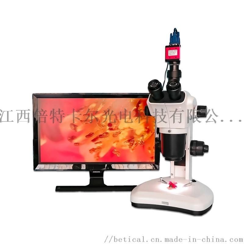 XTL-7063T-620HS型三目生物解剖鏡