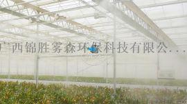 大棚蔬菜加湿喷雾设备-锦胜雾森
