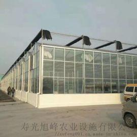 玻璃连栋温室,智能玻璃温室