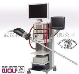 腹腔内窥镜,狼牌腹腔镜系统