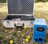 国产路博4160-II型甲醛分析仪