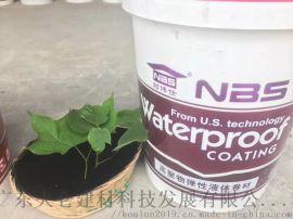 耐博仕液体卷材高弹性橡胶防水涂料屋顶屋面液体卷材