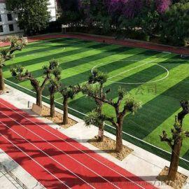 南宁人造草坪足球场 足球场地设计铺装