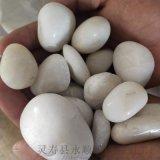 北京2-3釐米拋光白色鵝卵石多少錢一噸