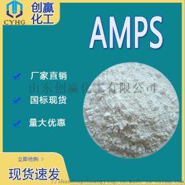 2-丙烯酰胺基-2-甲基丙磺酸 AMPS涂料改性剂