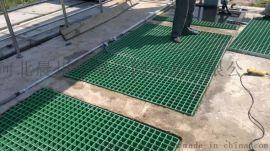 洗车房钢格栅板,漏水钢格栅板,玻璃钢格栅板