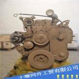 康明斯6LTAA8.9-C295柴油發動機總成