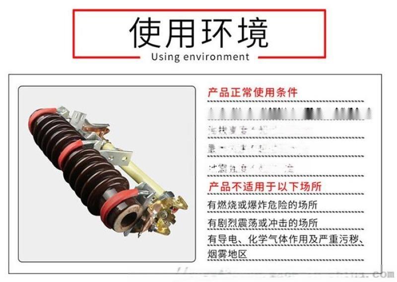 10KV户外跌落保险RW11户外高压熔断器