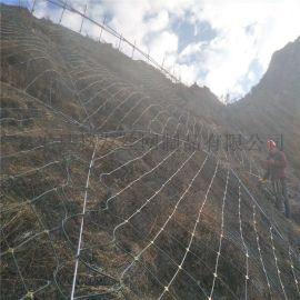 高速路边坡防護網报价.高速路防護網.主动边坡防護網