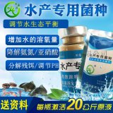 江苏EM益生菌养对虾的优点无锡苏州淮安