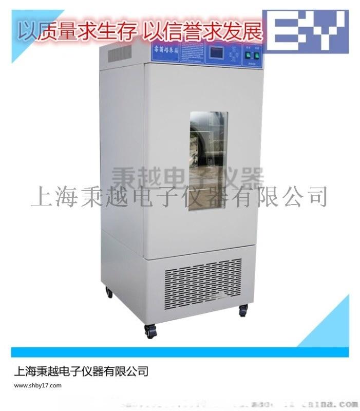 小型霉菌培养箱 上海秉越厂家直销