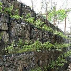 水利防护工程石笼网 巩固河床镀锌格宾网 厂家直销