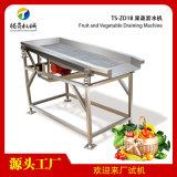 大型水果蔬菜振动沥水机干燥机器TS-ZD18