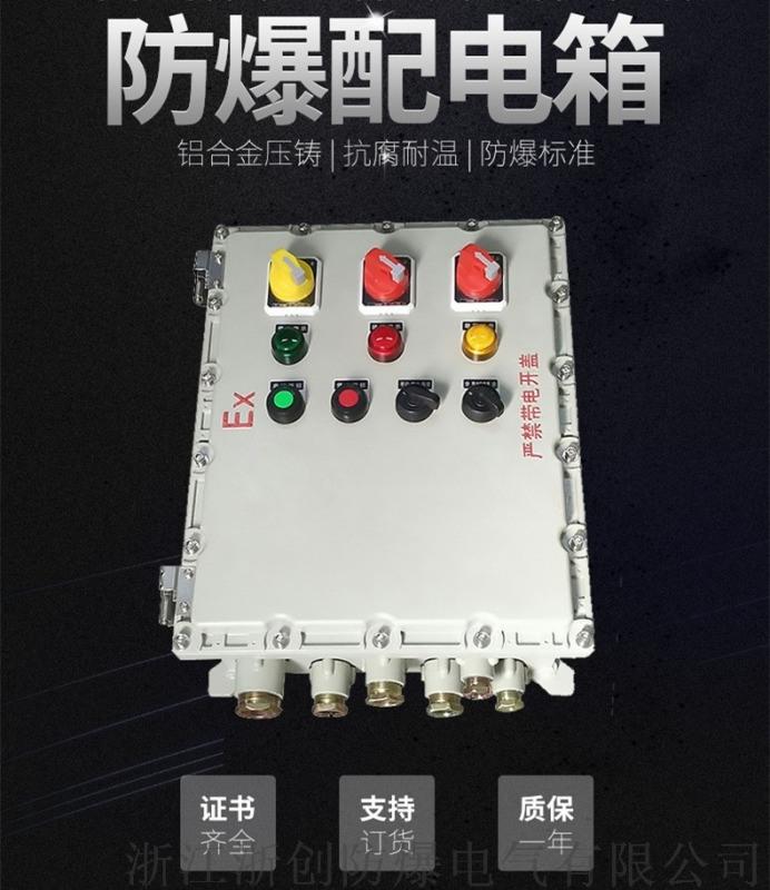 BXDM51-63防爆動力配電箱