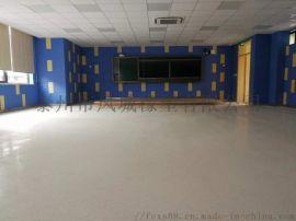 净化厂房同质透心地板,广东同透地板批发