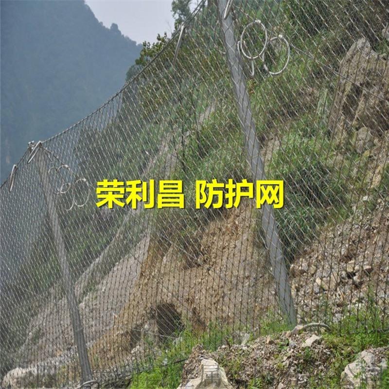 成都边坡绿化防护网,成都绿化防护网,四川柔性防护网
