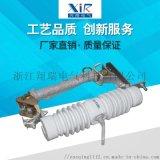 跌落式熔斷器 RW12-10/100熔斷器