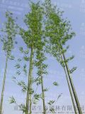 重庆仿真竹子加工 重庆防火阻燃假竹子 阻燃塑料竹子