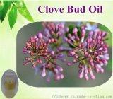 厂家生产 蒸馏萃取 精油原料    丁香花蕾油