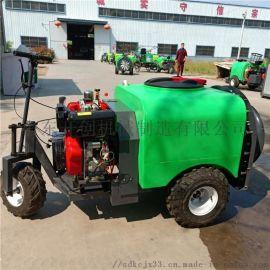 高压柴油喷雾打药机 远程高压喷雾器