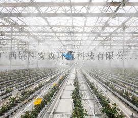 广西高压喷雾加湿降温设备厂家