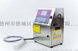 全自动流水式喷码机 小字符喷码机  食品生产日期批号打码