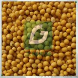 豌豆大豆小扁豆綠豆黑豆脫皮去皮機