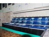 深圳饭店海鲜鱼池、餐饮海鲜池设计