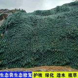 坑老化袋, 廣西河道護坡袋