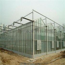 阳光板温室大棚建造 阳光板温室大棚工程