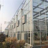 潍坊青州本地智能温室大棚智能玻璃温室建设工程