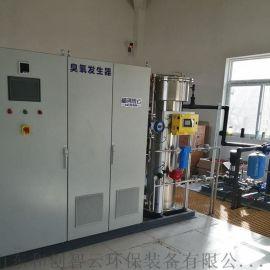 大型工业用水厂消毒装置-臭氧发生器