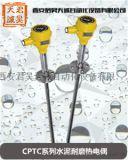 CPTC系列水泥耐磨热电偶