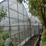 金坤薄膜溫室 連棟薄膜溫室設計 薄膜溫室大棚建造