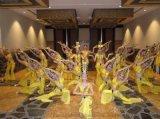 东莞歌舞团/东莞舞蹈团/东莞舞蹈队/东莞各类舞蹈表演提供