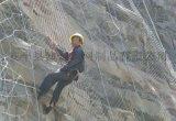 山體護坡防護網 sns邊坡防護網