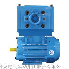 卧龙南阳防爆YBX5一级能效  效防爆电机