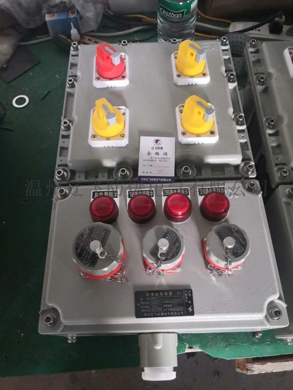 BM(D)X51-2kxx防爆照明配电箱