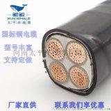 交联聚乙烯绝缘电力电缆多少钱一米