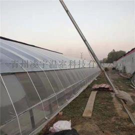 日光溫室建設日光薄膜溫室工程提供溫室資材