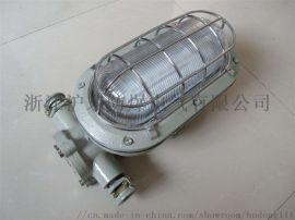 厂家直销DGC18/127L矿用隔爆LED支架灯