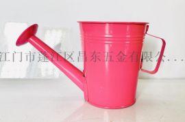 可拆装彩色多尺寸装饰花盘,铁花盘,铁洒壶