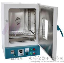 工业电热鼓风干燥箱DGF-4AB