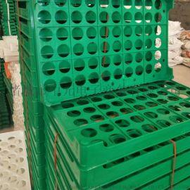 60枚塑料鸡蛋托塑料60枚蛋盘塑料蛋托厂家