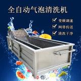 苹果大枣清洗机 全自动商用清洗机