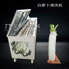 多功能毛刷清洗机脱皮机,土豆白萝卜清洗机设备