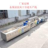 百香果清洗风干分级生产线,海南水果清洗生产线