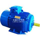 大功率永磁同步電機TYBZ315L-4/200KW