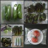 新科力-供應瓜果蔬菜自動包裝機 葉菜雙伺服打包機